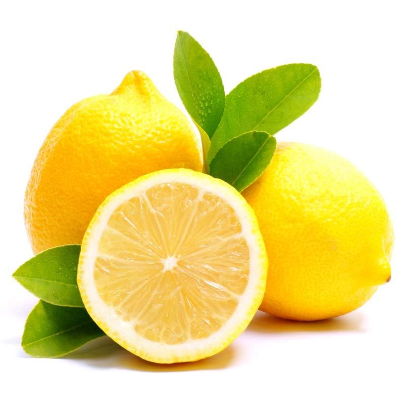 sadnice limuna